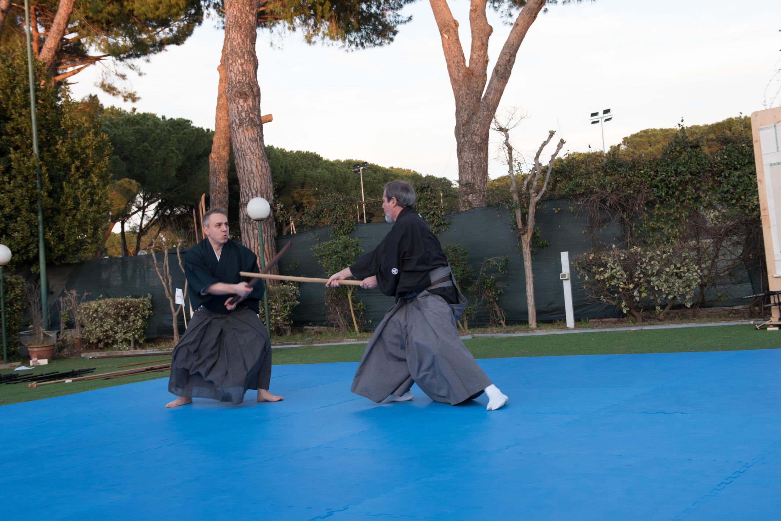 Bo jutsu - tecniche con il bastone